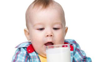 Когда можно давать ребенку коровье молоко, можно ли давать до года