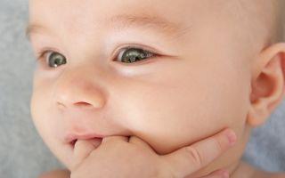 Грудничок сосет кулак — как отучить ребенка от этой привычки