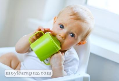 Полезные свойства клюквы для детей: рецепты напитков