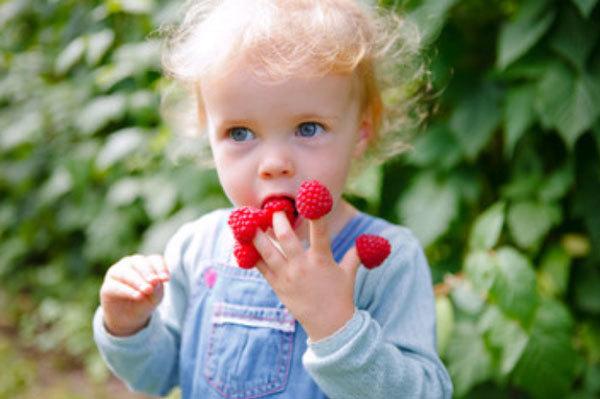 С какого возраста можно давать ребенку малину