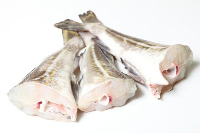 Какую рыбу можно при грудном вскармливании
