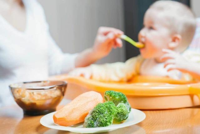 Мясное пюре для грудничка в домашних условиях: советы как приготовить