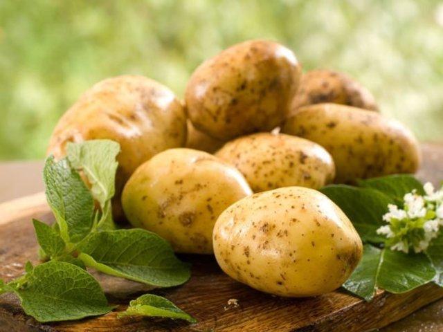 Когда можно давать картофельное пюре грудничку