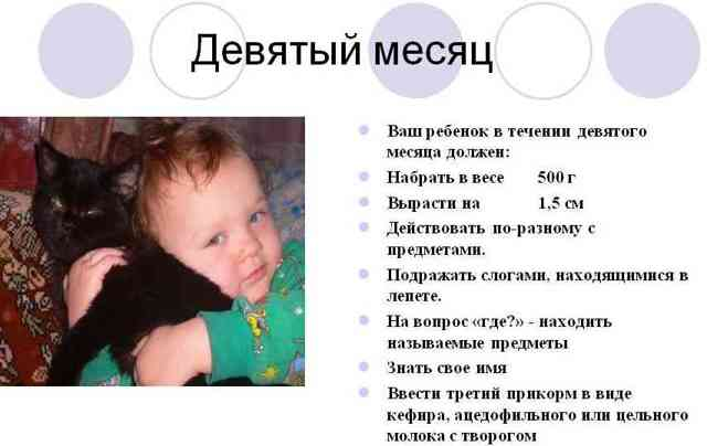 Развитие ребенка в 9 месяцев что должен уметь малыш
