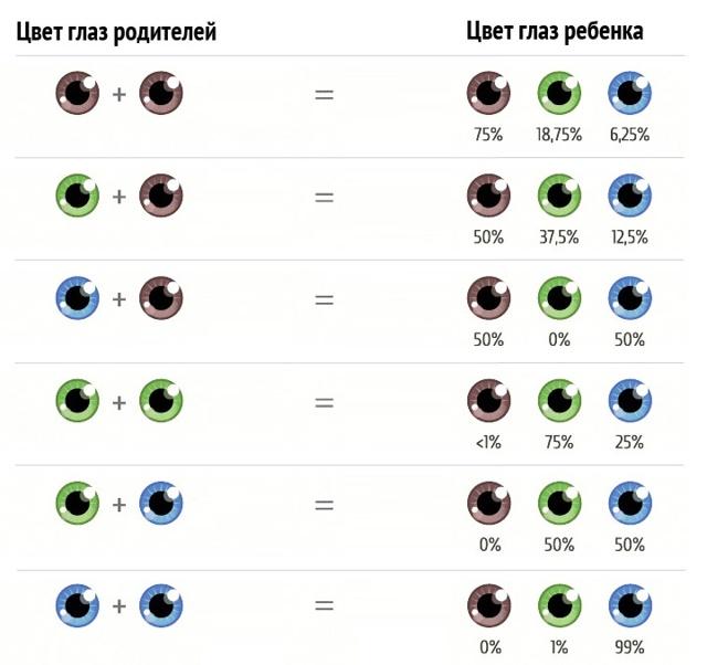 Цвет глаз у новорожденных: таблица, какой цвет глаз у ребенка будет